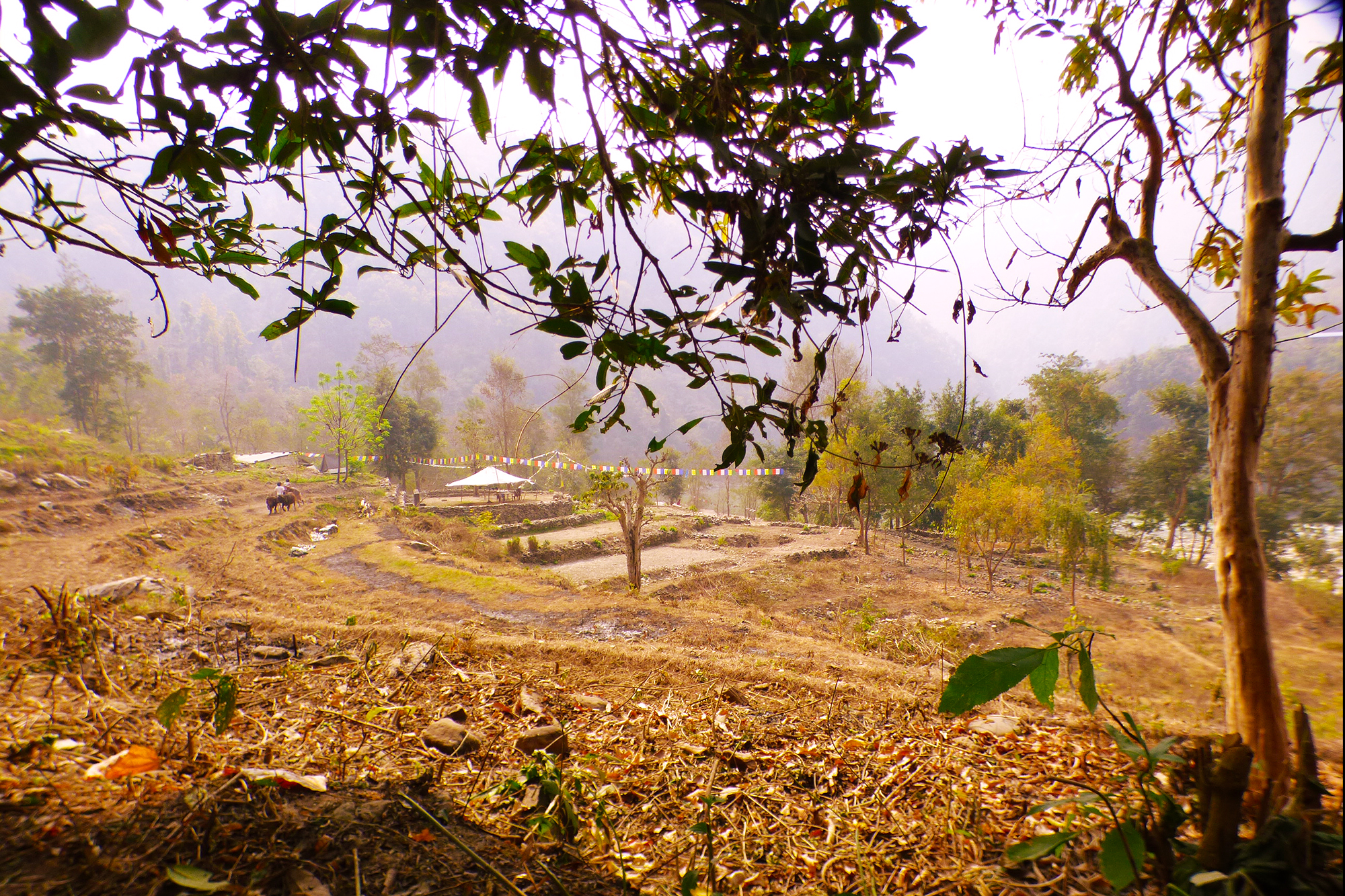Gurung Valley